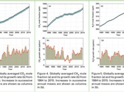 Read article: Carbon Dioxide Levels Reach Record High, Ushering in a New Era of Climate Reality